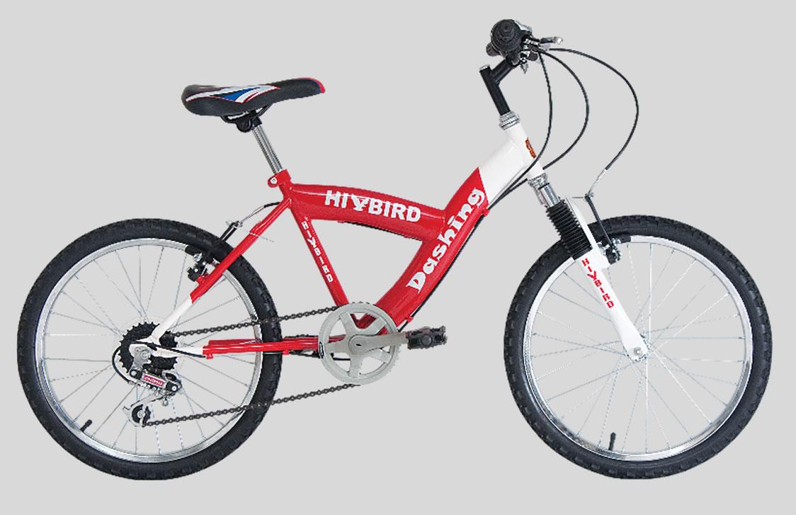Mountain Bikes - Dashing - Safari Bikes UK - Manufacturers and ...